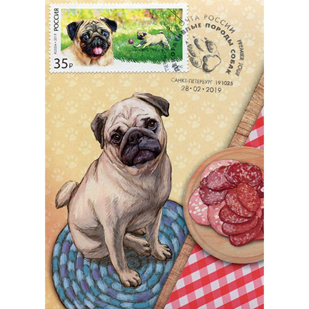 2019 Декоративные породы собак. Мопс №2019-071-4