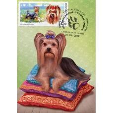 2019  Декоративные породы собак. Йоркширский терьер №2019-072-4