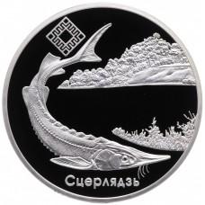 20 рублей 2007 Стерлядь. Беларусь. Серебро
