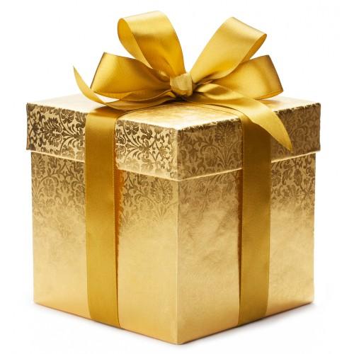 Скидка 100 рублей на 1-й заказ + подарок в каждом заказе!