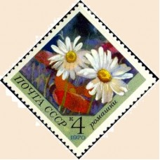 1970 Цветы. Ромашки