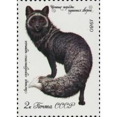 1980 Ценные породы пушных зверей.Серебристо-черная лисица