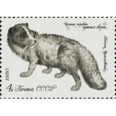 1980 Ценные породы пушных зверей.Песец вуалевый