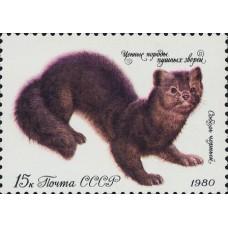 1980 Ценные породы пушных зверей.Черный соболь