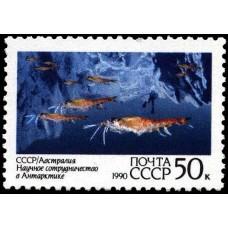 1990 Научное сотрудничество СССР и Австралии в Антарктиде. Морская жизнь