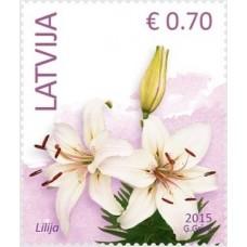 2015 Латвия.Стандартный выпуск. Цветы.Лилия