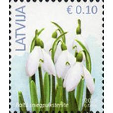2019 Латвия. Стандартный выпуск. Цветы. Snowdrop