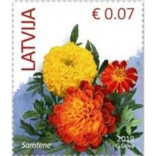 2019 Латвия. Стандартный выпуск. Цветы.Marigold (2019 Imprint Date)